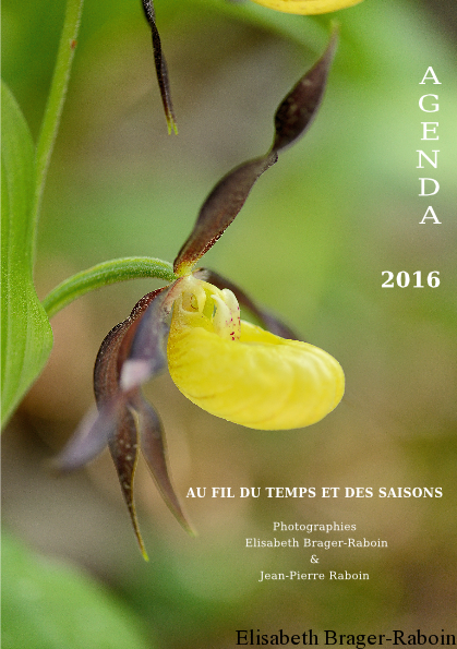 Livre-Photo Agenda 2016