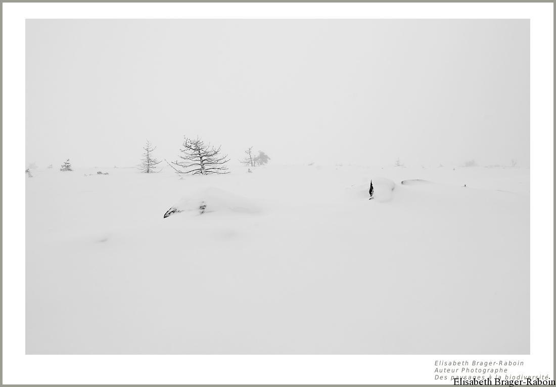 Une marche entre neige et pluie