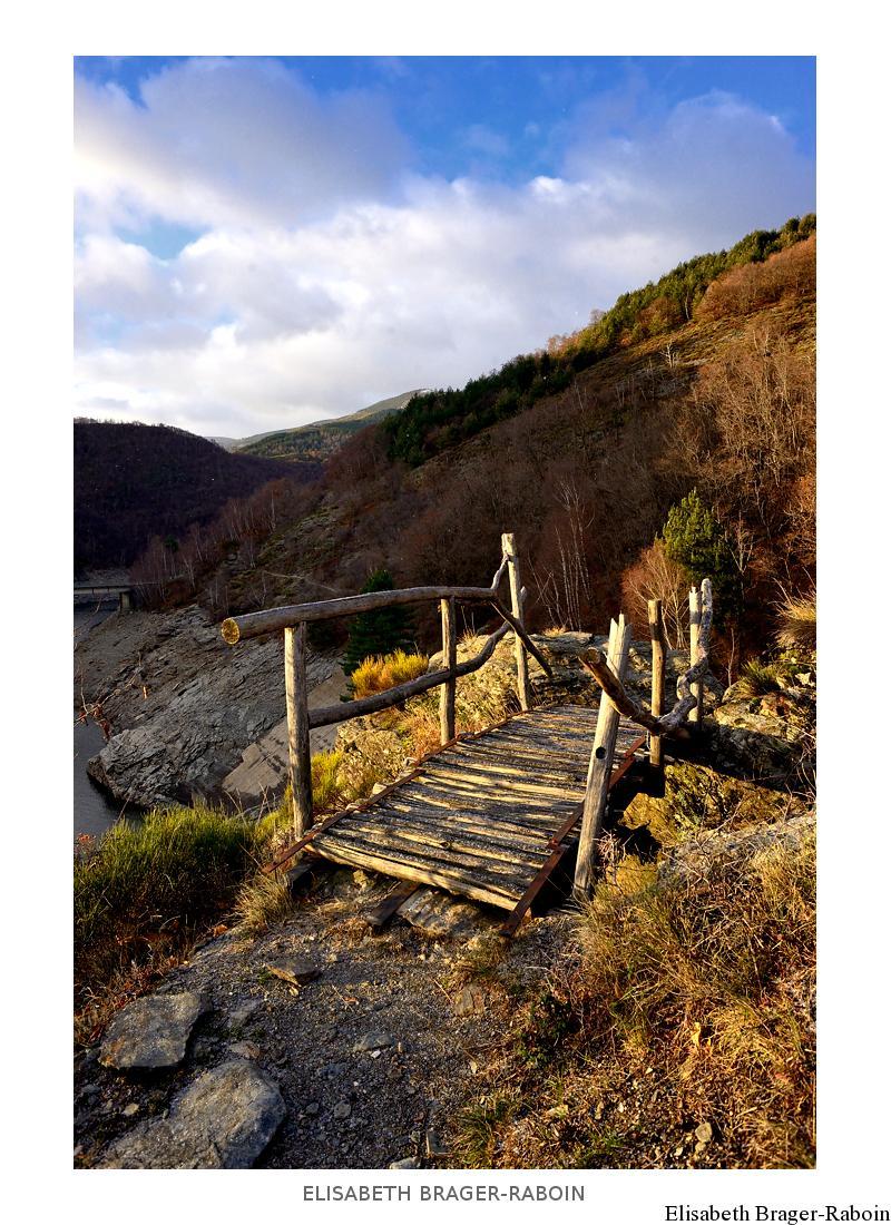 Petit pont de bois